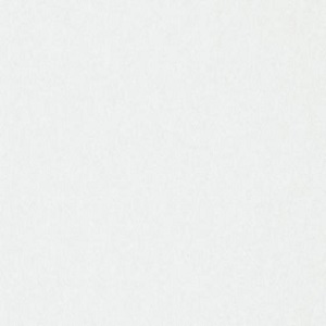 Papel de Parede Branco 3330-1