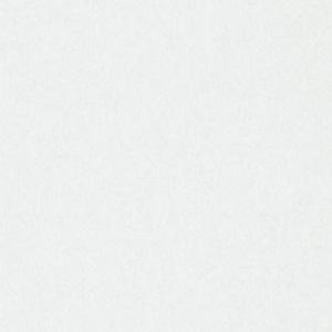 Papel de Parede Branco 3331-1