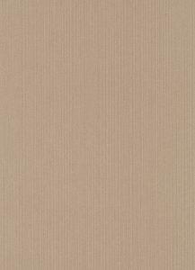 Papel de Parede liso Marrom 10004-30