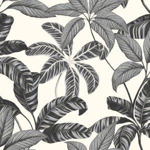 Ref: 4101 - Papel de Parede Floral Preto e Branco